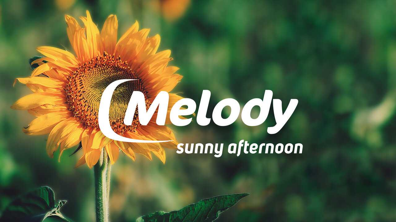 Sur Melody dès 16h00 : Melody Sunny Afternoon