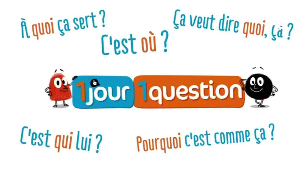Sur France 4 dès 06h20 : Un jour, une question