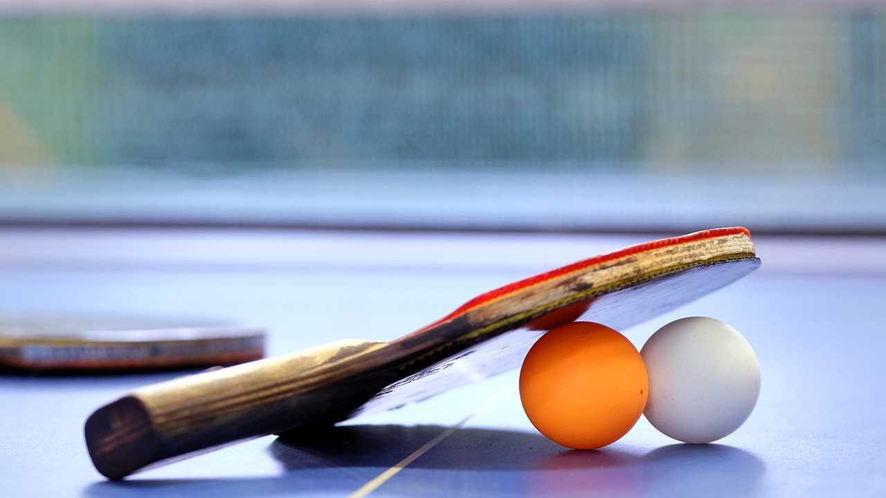 Tennis de table : PRO A (Hennebont / Les Loups d'Angers)