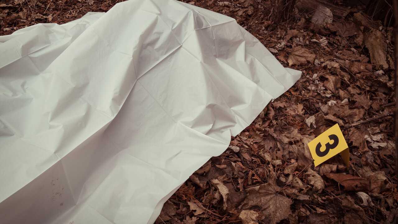 Sur Chérie 25 dès 10h00 : Snapped : les femmes tueuses