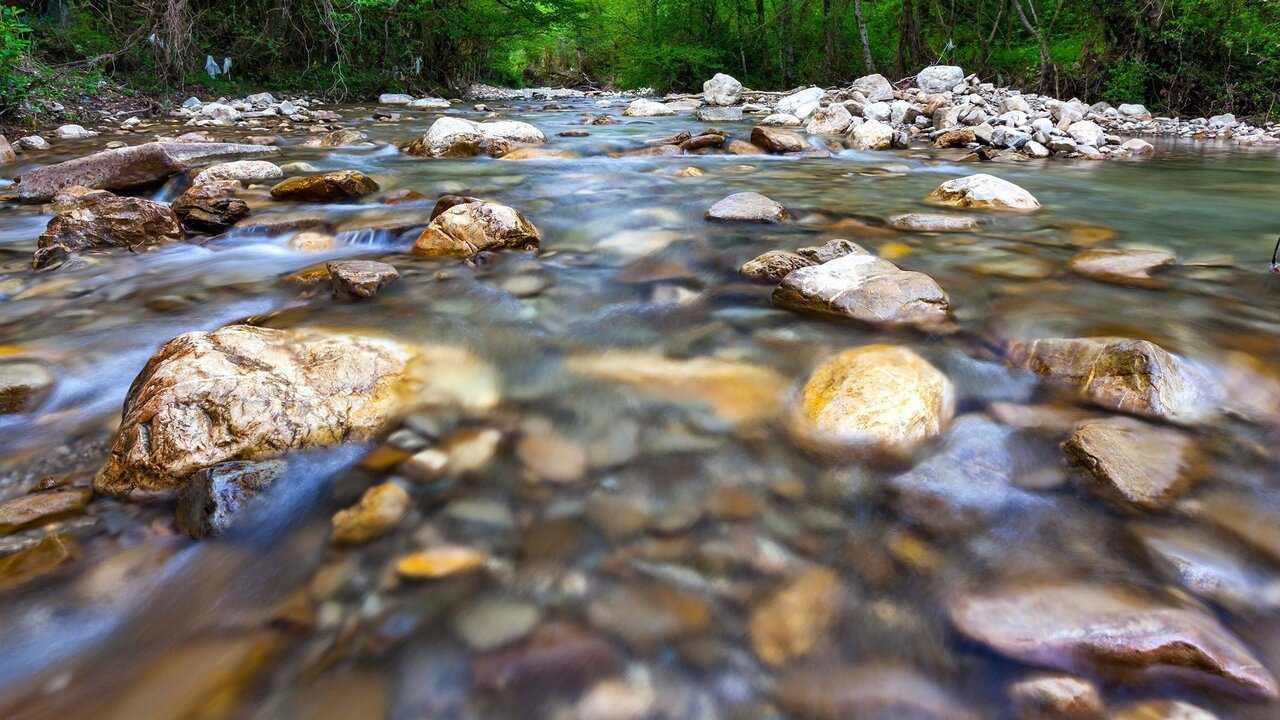Sur Ushuaia TV dès 12h50 : La rivière