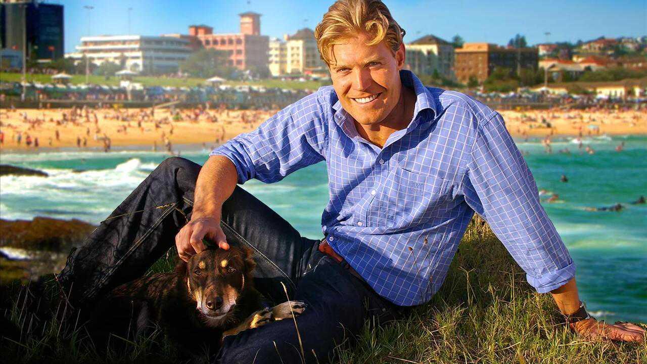 Sur Animaux dès 11h35 : Le vétérinaire de Bondi Beach