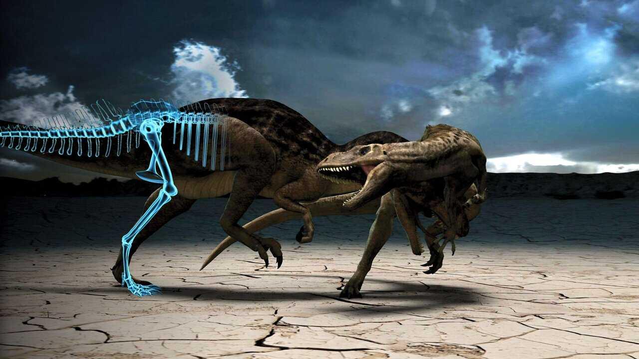 Sur Science et Vie TV dès 07h23 : Jurassic Fight Club