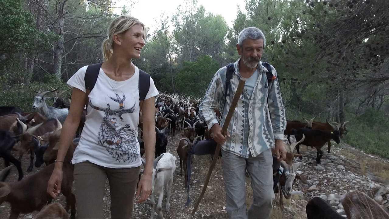 Sur Ushuaia TV dès 10h55 : Des animaux d'avenir