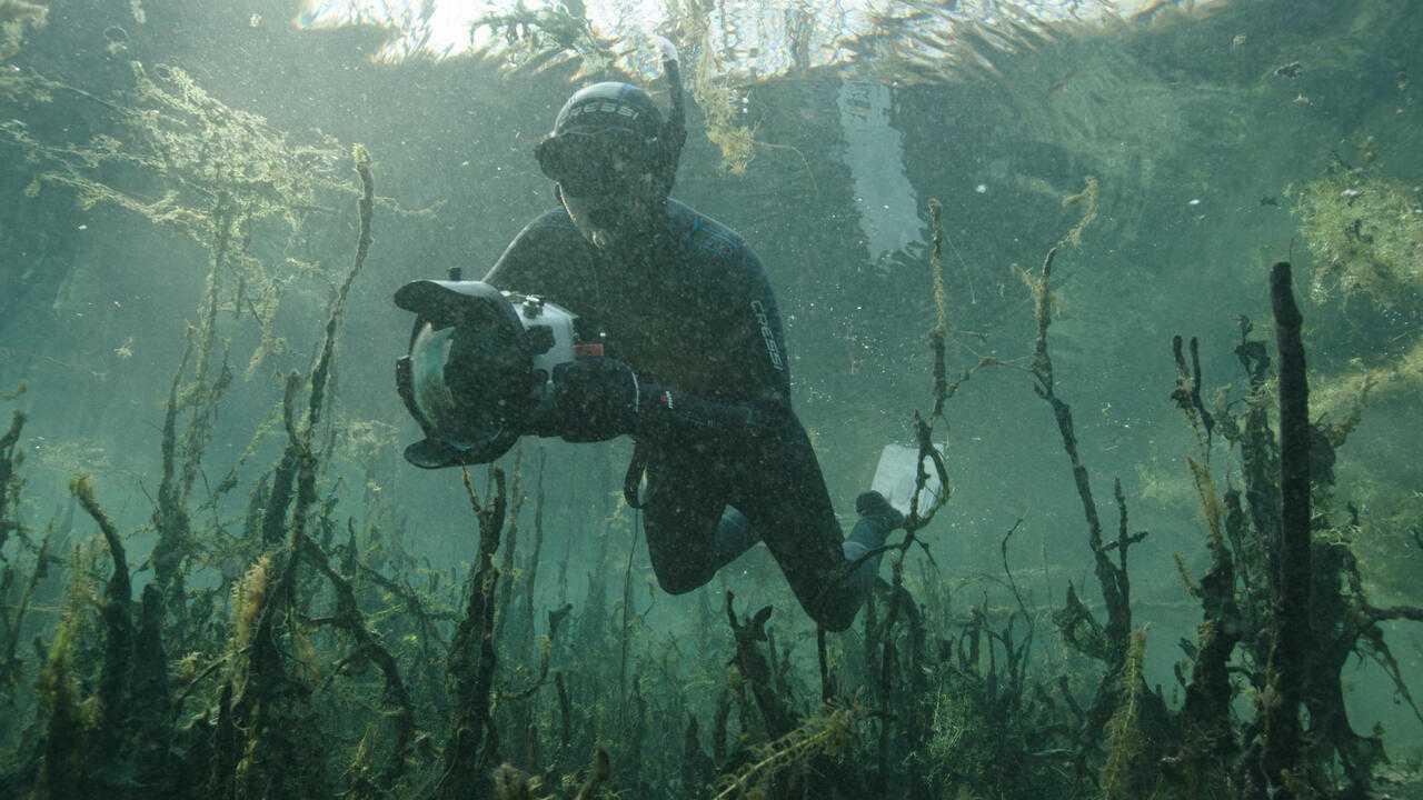 Sur France 5 dès 10h00 : France terre sauvage - l'eau vive