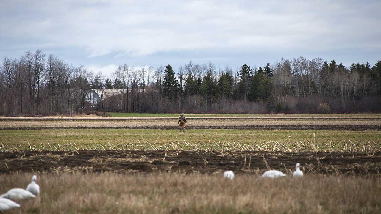 Sur Chasse et Peche dès 21h52 : Québec à vol d'oiseau