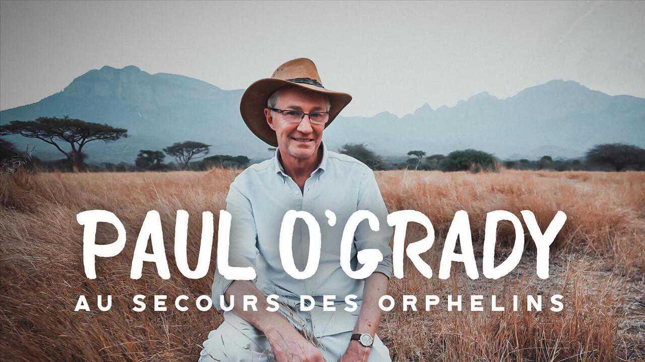 Sur Animaux dès 22h10 : Paul O'Grady, au secours des orphelins