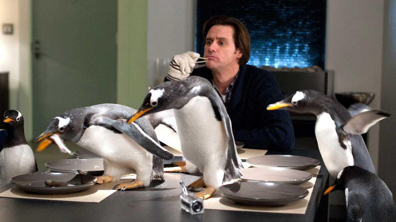 Sur Canal Plus Family dès 22h31 : M. Popper et ses pingouins