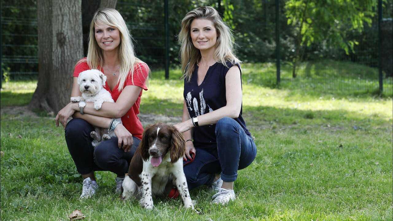 Sur C8 dès 11h12 : Animaux à adopter : nouvelle famille pour une nouvelle vie