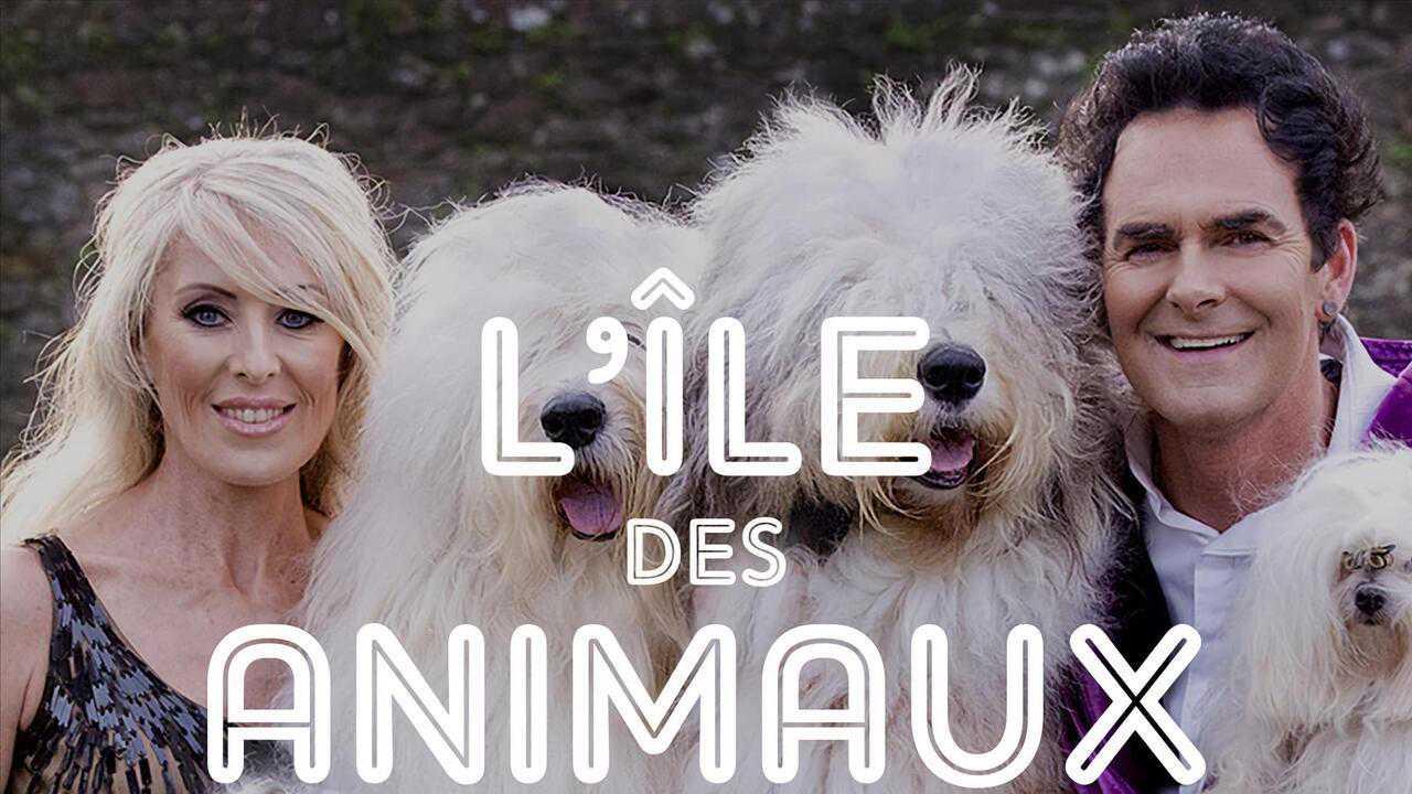 Sur Animaux dès 16h00 : L'île des animaux