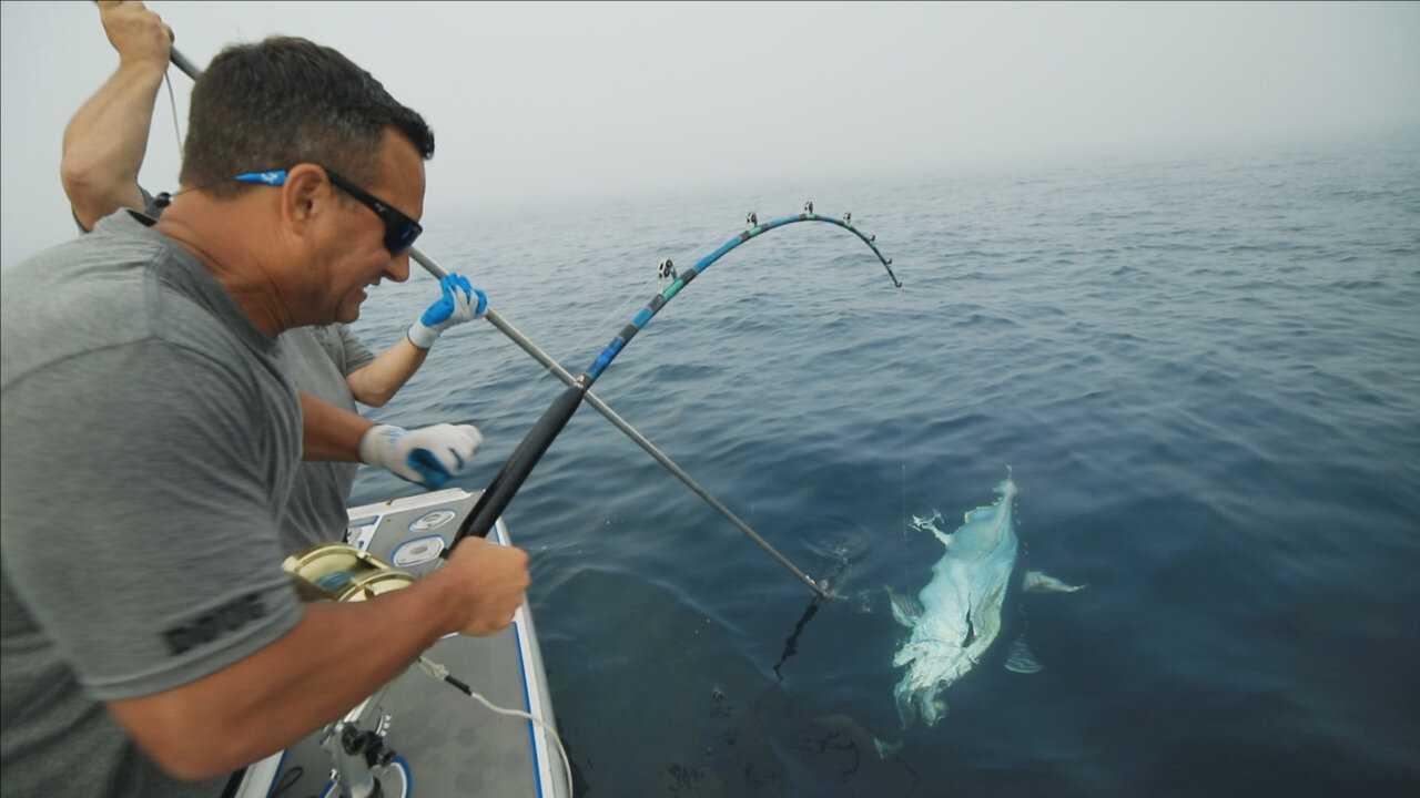 Sur National Geographic dès 08h15 : Pêche à haut risque